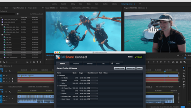 Photo of EditShare shares real-time 4K footage of Great Barrier Reef